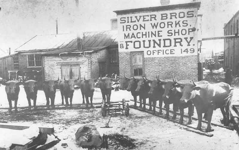 55. The twelve oxen, which will hold up the baprismal font in the temple, stand in neat rows in the yard of Silver Brothers Iron Works Foundry.